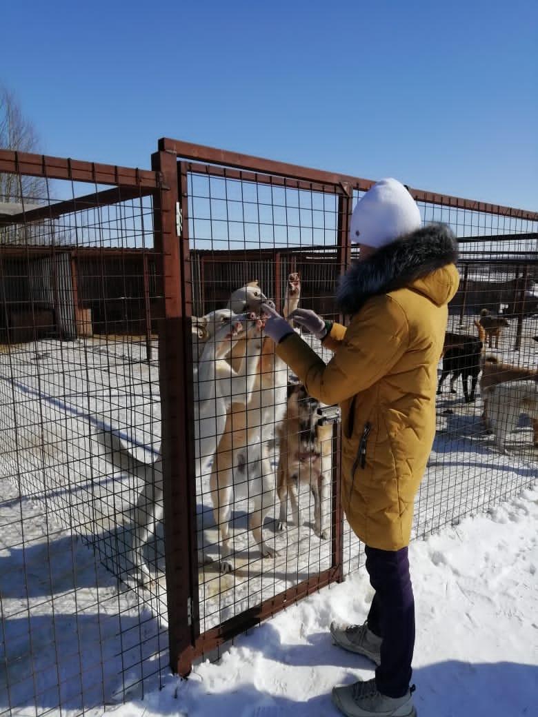 Дорогие друзья! 13 марта сотрудники ГК «ЕВРОНИТ» посетили приют для бездомных животных «АЗИРА» @azira_dogcat